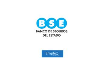 Empleo en BSE