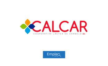 Empleo en CALCAR