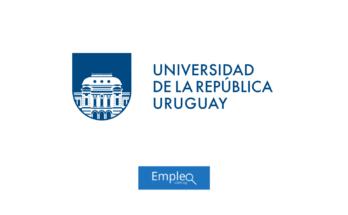 Empleo en Udelar